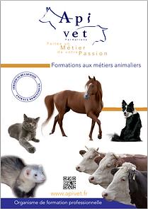 Apivet organisme de formation pour auxiliaire vétérinaire en canine, féline, équine et rurale et certificat de capacité animaux domestiques