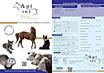 Document pour s'inscrire aux formations d'Apivet d'auxiliaire vétérinaire ou de certificat de capacité Chien chat