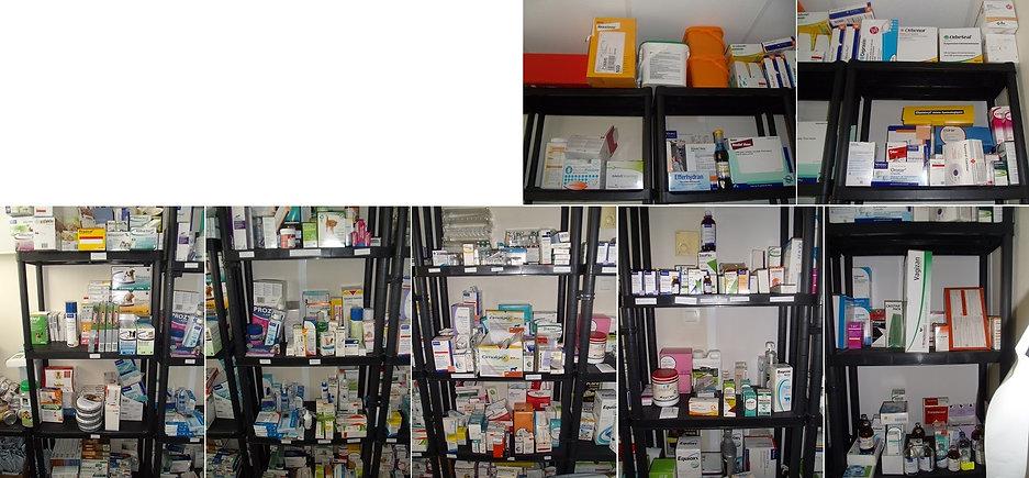 Pharmacie Apivet formation auxiliaire vétérinaire