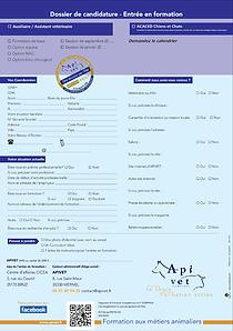 dossier candidature apivet.png