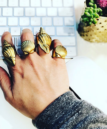 Corolla Rings