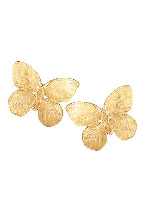 Mariah Butterflies