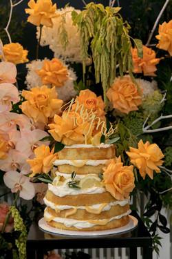 Alina's Cake