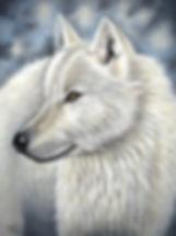 Arctic wolf pastel wildlife portrait