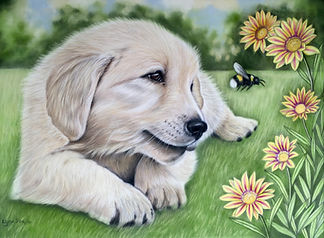 goilden retriever pet portrait