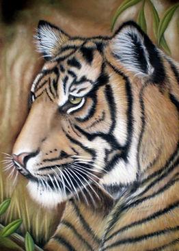 wildlife tiger pastel painting