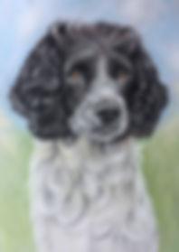springer spaniel pet dog painting