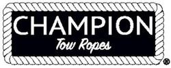 Champion Logo 2017