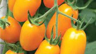 Tomato-Small (3 types)
