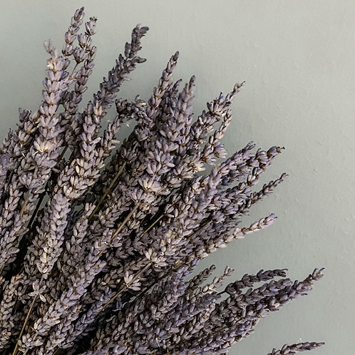 Dried Lavender - Bunch