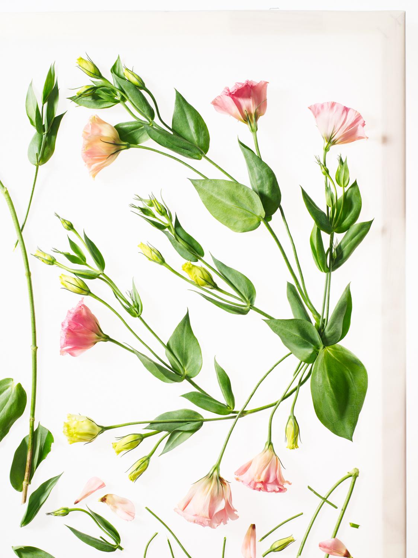 Sayers Flowers-1.jpg