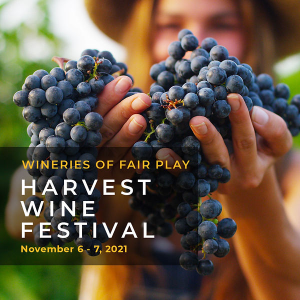 Harvest Festival 2021.jpg
