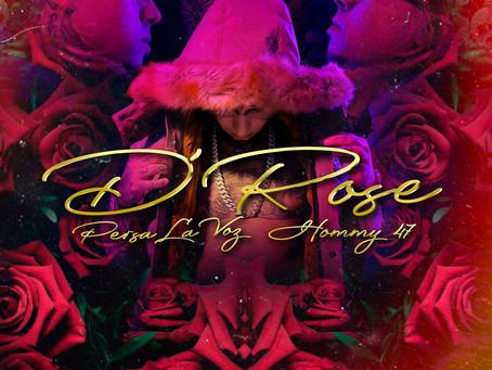 Persa La Voz - D'Rose