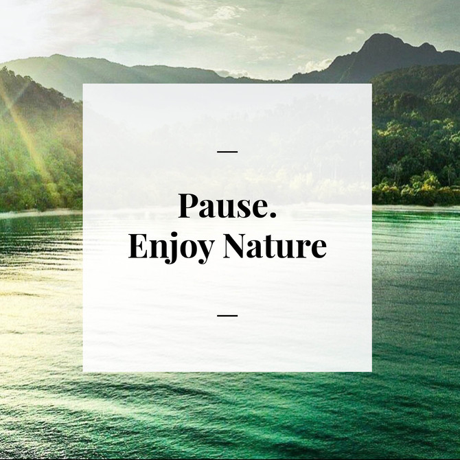 Day 4 - Pause. Enjoy Nature