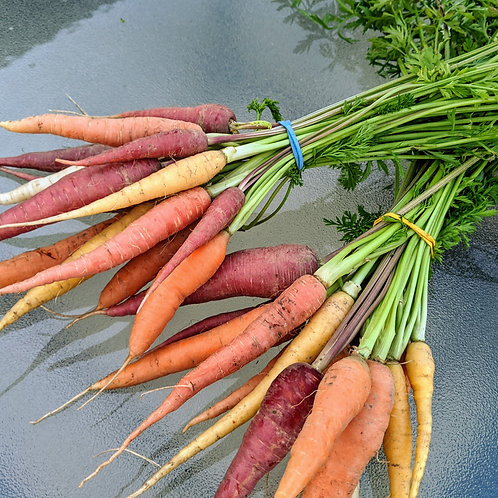 Short n' Sweet Baby Carrots