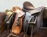 Saddle with stirrups on stallion running