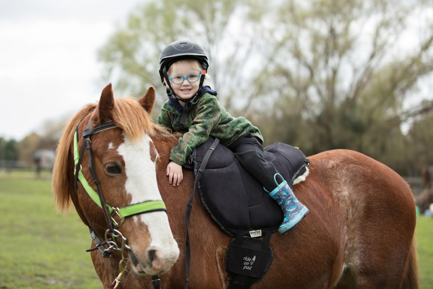 Pony & Horse Experience