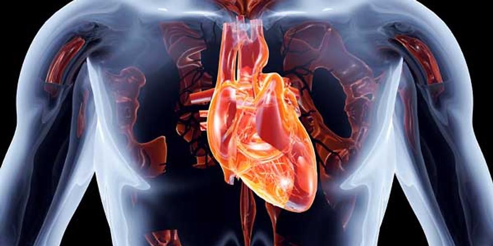 Cardiovascular Top Models