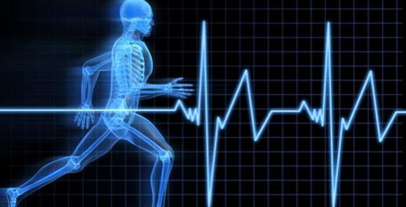 Body 31 Running Skeleton.jpg