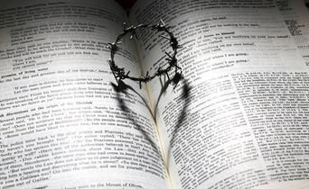 Home page_Bible ring heart photo.JPG