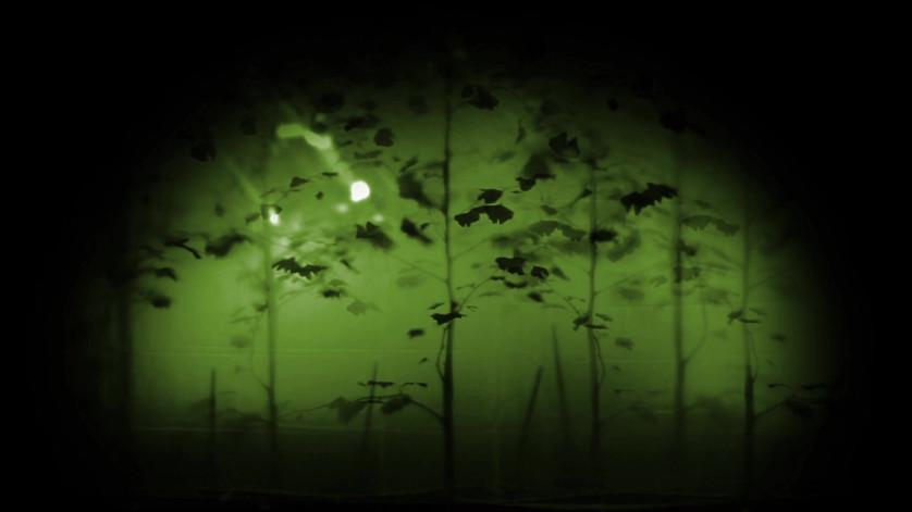 treesloopedgreen.mov