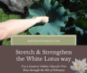 Stretch & Strengthen the White Lotus Way
