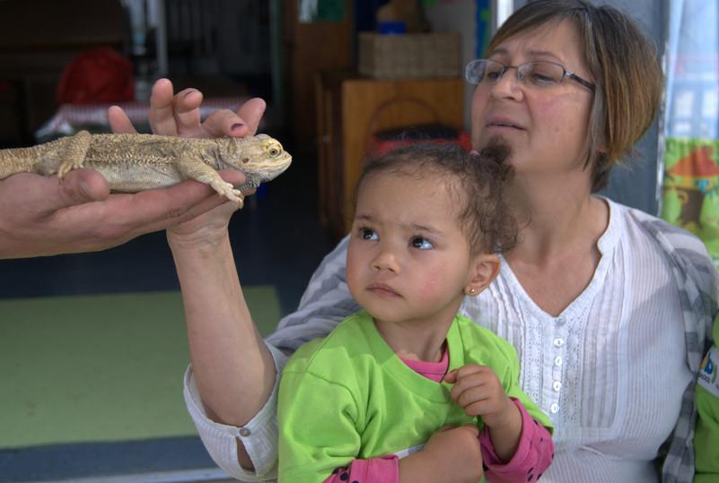 reptile show 15.jpg