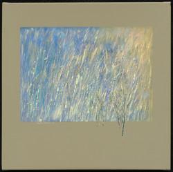 214718_West Fork Grasses