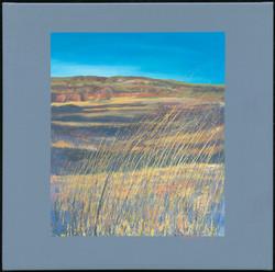 214718_Ranchland Grasses