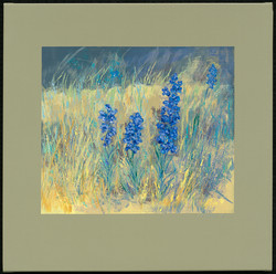 215647_Roadside Blue