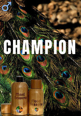 Woody Perfume Oil Samples
