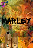 Marley  (3).png