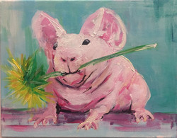 ludwik the guinea pig