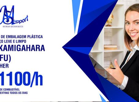 Kakamigahara (Gifu): Kensa de Embalagem Plástica | ¥1100/h + Benefícios