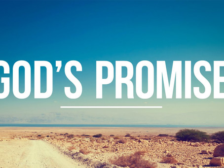 God's Promises in His Word