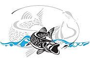 Рыболов в Новокосино