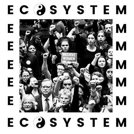 Why Ecosystem?