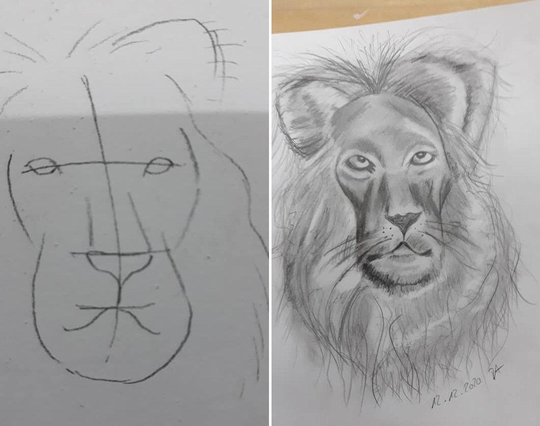Richtig Zeichnen lernen