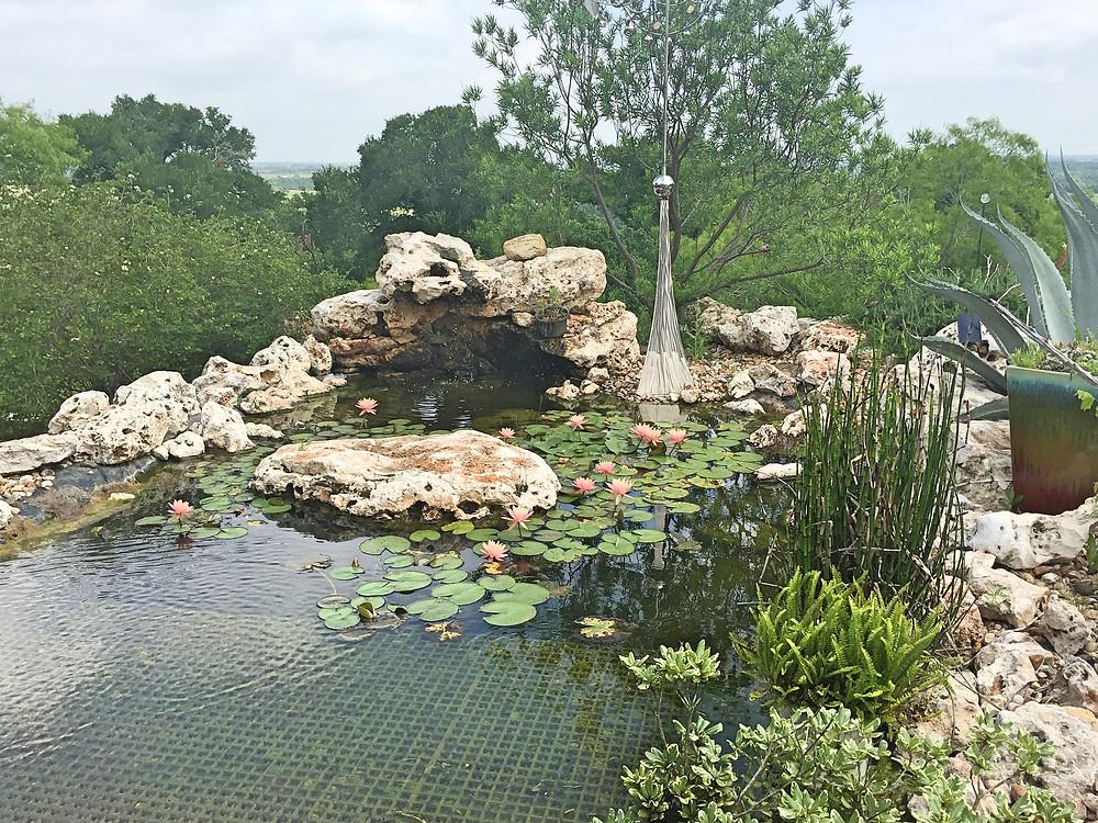 TerrAdorna lily pond
