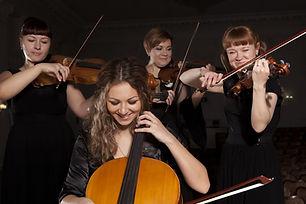 Musician play violin on dark background.