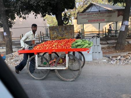 南インドのカレーはやさしいお味