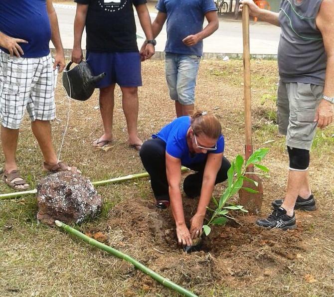Com plantio de mudas, Dia da Árvore foi celebrado em Bom Jesus do Tocantins