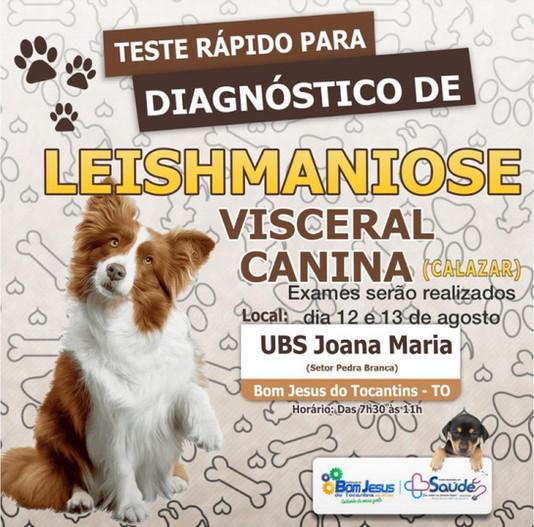 Semana de Controle e Combate as Leishmanioses contará com exames para diagnóstico do calazar