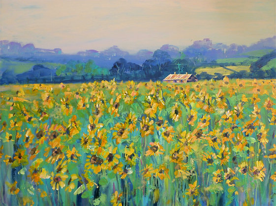Sunflowers, Brittany