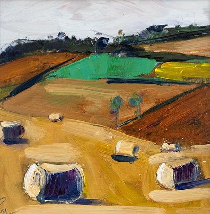 Fife Harvest Field