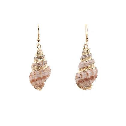 Sea Snall Earrings