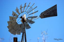Windmills ©K.Jackson (TPG) RELEASED