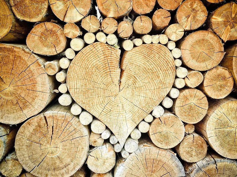 heart-1288420_1280 TheUjulala Pixabay.jp