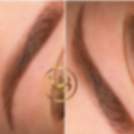 vodnik beauty brow.png