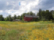 land with barn.jpg